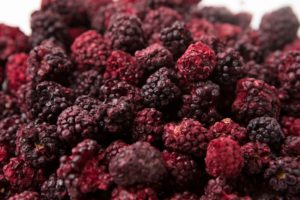 Freeze dried whole blackberries